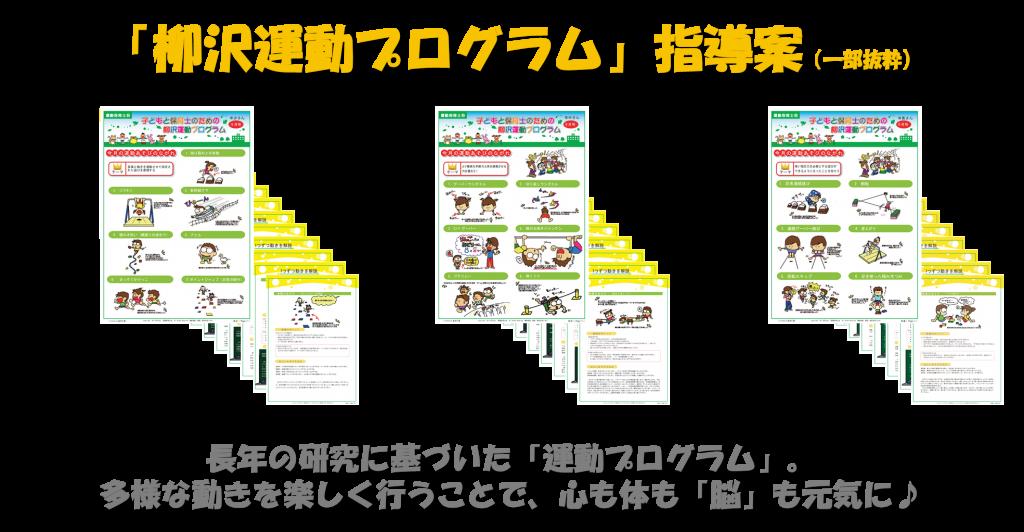 柳澤運動プログラム指導案